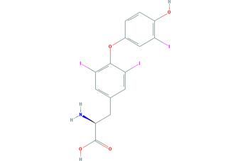 T3 (liothyronine)